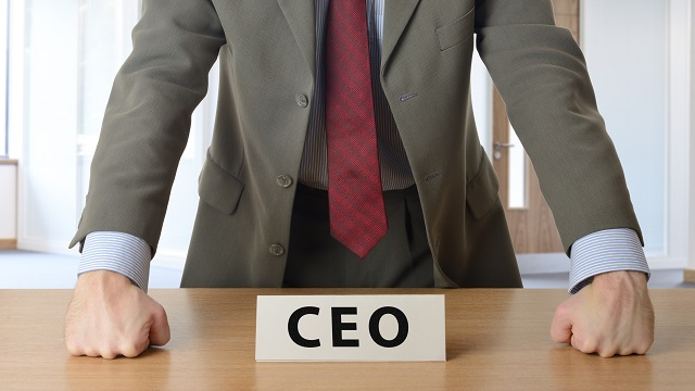 CEO strategy